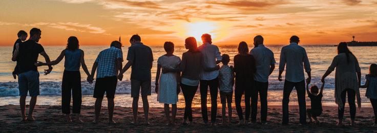 Pratiques systémiques et thérapies familiales : Les bases – Appréhender d'emblée les situations des personnes dans leur globalité et leur complexité